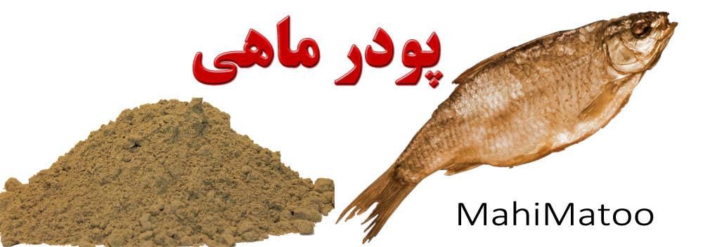 فروش ویژه پودر ماهی غنی ترین منبع تامین پروتئین