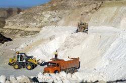 ارزان ترین صدف معدنی پودری