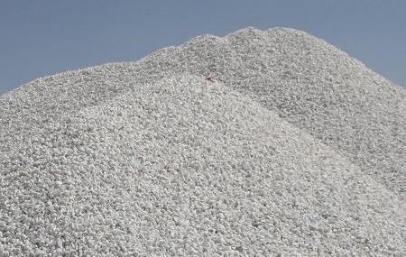 قیمت خرید صدف معدنی