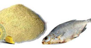 بهترین پودر ماهی ایرانی