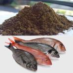 خرید پودر ماهی خاص